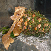 Jens Jakobson Christmas: bark, biscuits, moss, picture 9