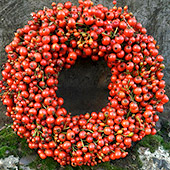 Jens Jakobson Christmas: red berry wreath