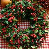 Jens Jakobson Christmas: red winter berries wreath