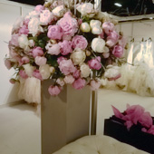 Jens Jakobson Events: pink and white roses, bridal shop, picture 19