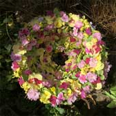 Jens Jakobson Events: wreath of joy, cherry-blossom, yellow pansy and orchids