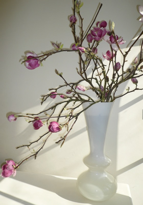 Jen Jakobsen Floral Construction Home flowers: stemmed magnolia vase arrangement
