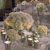Jens Jakobson Events: pastel green and white hydrangea table settings, picture 18