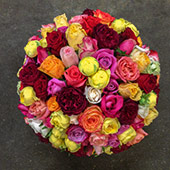 Jens Jakobson Workplace:  flowers 1, mixed roses