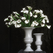 Jens Jakobson Workplace: flowers 5, white lily