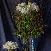 Jens Jakobson Workplace: flowers 10, white lily
